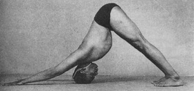 BKS Iyengar showing the downward facing dog yoga pose