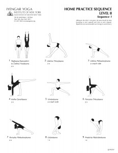 leaflet with level 2 yoga sequences for self practise