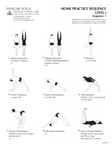 leaflet with level 1 yoga sequences for self practise