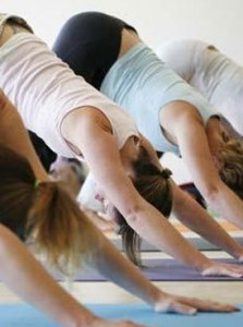 Group of women in a yoga pose