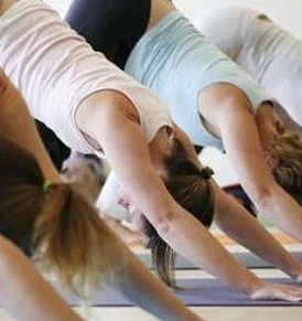women in downward facing dog yoga position