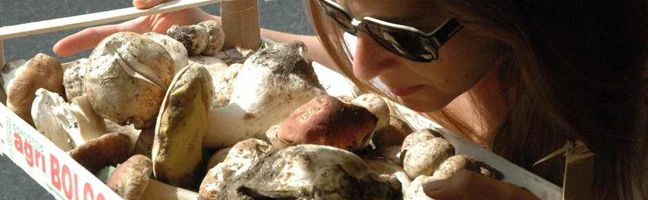 galit hahn testing mushrooms in italy