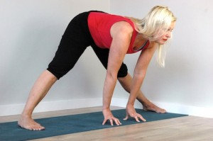 prasarita padotanasana upright variation