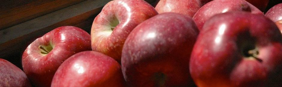 apples HDR 940X291