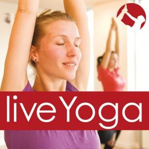 Live Yoga Amsterdam image logo 2013