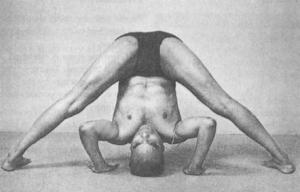 Prasarita padottanasana Iyengar