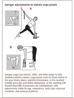 iyengar yoga and lower back pain  liveyoga  yoga shala