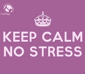 Practical Tools for Stress Relief with Marlene Smits