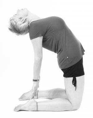 Grow from your roots – Iyengar yoga workshop with Rachel Lovegrove
